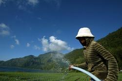 Bangladesh-Indonésie : les risques sanitaires des pesticides