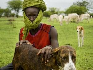 L'attractivité des terres agricoles africaines constitue t-elle un indicateur de développement ?