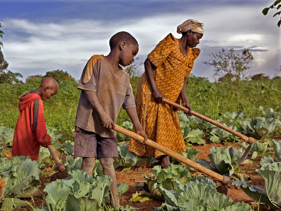 Repenser la politique agricole des Etats