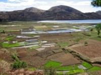 Accaparement des terres : le cas du Bénin