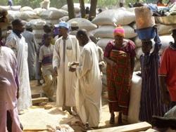 Nigeria : Les retombées de la crise alimentaire au Niger