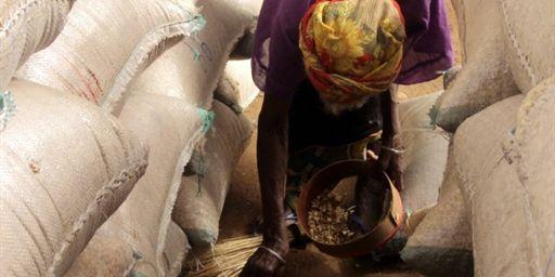 Au G20, la sécurité alimentaire grande absente des débats
