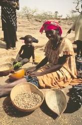 Souveraineté alimentaire en Afrique de l'Ouest : la résistance des peuples contre les agression