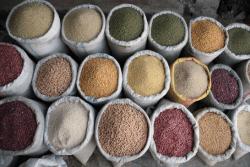 Afrique : Il faut aider les petits fermiers, plaide un nouveau rapport