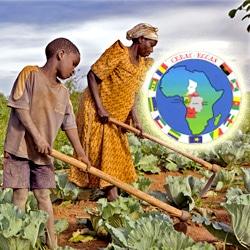 Gabon : Libreville adhère à la Politique agricole de la CEEAC