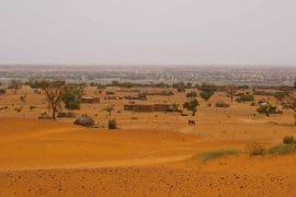 Bulletin de veille n°163 - Spécial « Politiques foncières rurales »