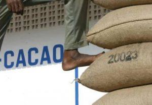 Le cacao ne fait plus recette