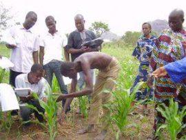 Renforcement des capacités d'adaptation au Bénin