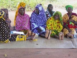 Lancement de la 2eme Edition du Fonds d'Innovation AfricaAdapt