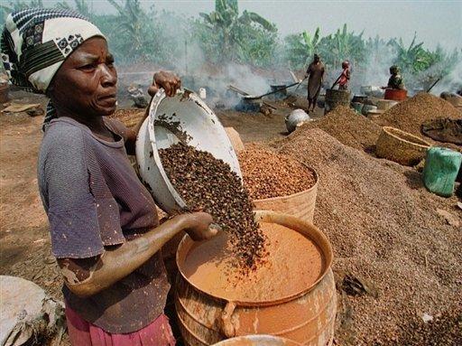 Agriculture africaine: 100 millions de dollars de crédits pour les petits exploitants