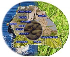 Conseil agricole et rural – L'Ancar revoit son dispositif