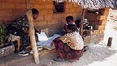Différents guides sur les marchés ruraux développés par la FAO :