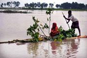 Les pays les moins avancés ont besoin de financements pour lutter contre le changement climatique