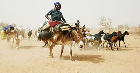 La prévention des crises reste un défi majeur en Afrique de l'Ouest