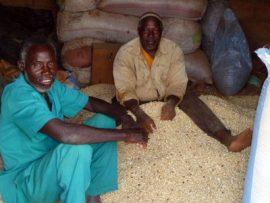 L'amélioration de la politique agricole et du transport est le secret de la sécurité alimentaire