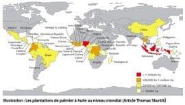 """Dossier d'OCL sur """"Palmier à huile et développement durable"""""""