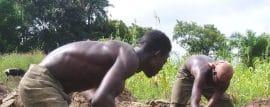 Etude sur la main-d'oeuvre agricole au Togo et au Bénin