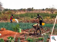 Investir dans la petite irrigation !