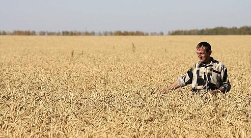 Nouveau pic des prix alimentaires mondiaux