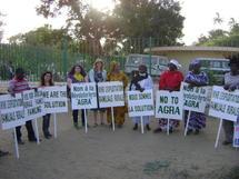 Sécurité alimentaire : les Africains défendent leur modèle agricole au FSM
