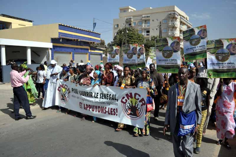 Le 11ème Forum Social Mondial de Dakar (suite)