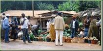 Organisation des cadres de concertation inter-acteurs des marchés de la région de l'Ouest Cameroun