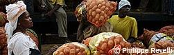 La Fédération des paysans du Fouta Djalon (FPFD) - Vers l'autosuffisance alimentaire