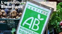 """""""Il n'existe aucune politique de l'agriculture biologique au Cameroun"""""""