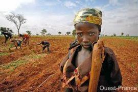"""Note stratégique Agriculture et Sécurité alimentaire: """"La Belgique soutient l'agriculture familiale durable"""""""