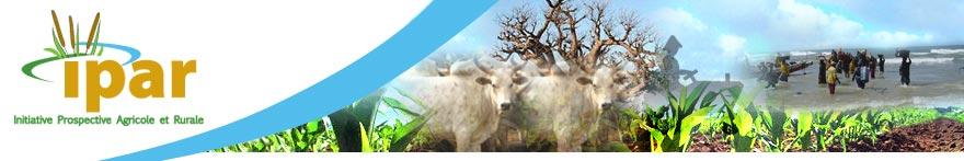 Présentation de l'Ecowap sur le site de l'IPAR
