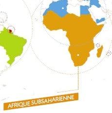 AFD : près de 3 milliards d'euros pour l'Afrique en 2010