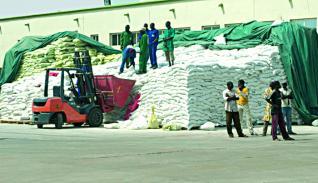 Campagne agricole 2011-2012 : Le point des préparatifs
