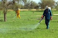 Sénégal : la gestion des pesticides pose encore problème dans le pays