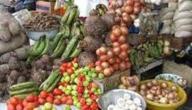 Gabon : un nouveau modèle agricole en germe