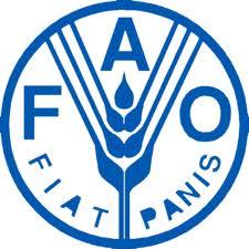Prévisions de l'Ocde et de la Fao : Augmentation en vue de la production mondiale de céréales