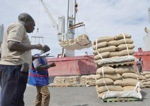 La récolte de cacao bat des records en Côte d'Ivoire