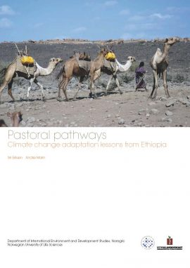 Pastoral pathways Climate change adaptation lessons from Ethiopia
