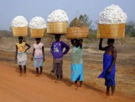 Assainir le dialogue entre les organisations professionnelles agricoles et l'Etat
