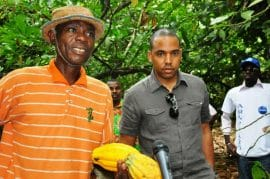 Réforme de la filière café-cacao: Les planteurs