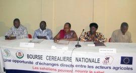 Bourse céréalière nationale : On a spéculé à Ouaga