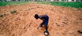 Sécurité alimentaire: le changement climatique