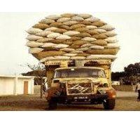 Evolution des prix de marché en Côte d'Ivoire