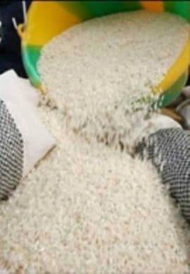 Etude de marché sur le riz local au Burkina Faso