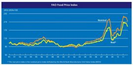 FAO : l'année 2011 a été marquée par des records de prix alimentaires
