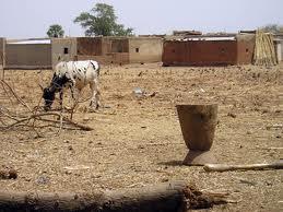 Note sur la crise alimentaire en cours au Sahel