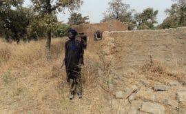 Razzia sur les terres rurales du Ziro : L'agrobusiness ne fait pas bon ménage avec l'élevage