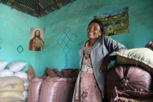 Quelles priorités pour un développement agricole des pays du Sud ?