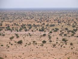 Sahel: l'urgence alimentaire