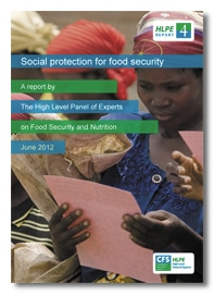 Social protection for food security