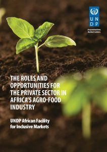The roles and opportunites for the private sector in Africa's agro-food industry